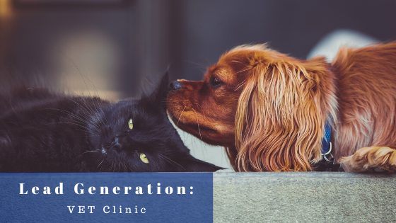 Lead Generation for Vet Clinic